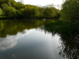 embercombe-lake-1