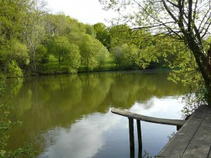 embercombe-lake-2