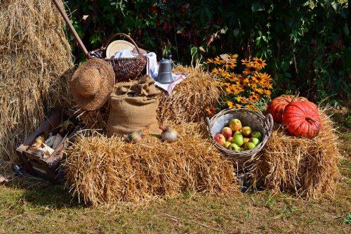 Harvest astrology