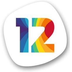 twelve step programme