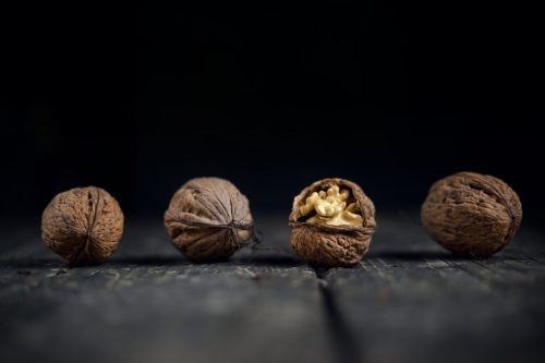 brain walnut