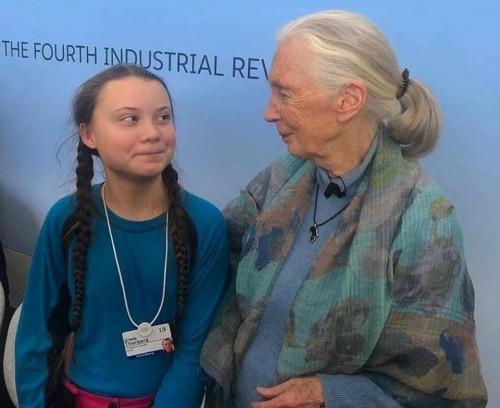 greta thunberg jane goodall climate change